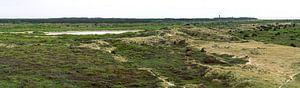 Het wonderlijke groene Terschelling(panorama) van Jeroen Somers