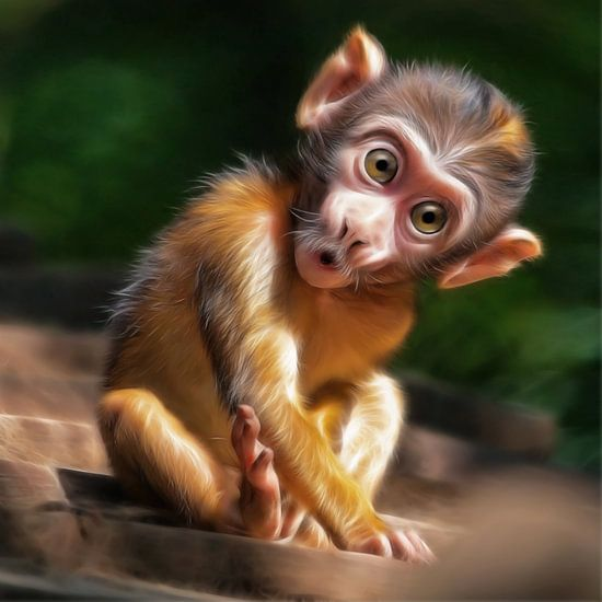 cute baby monkey van Silvio Schoisswohl