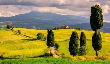 Im Herzen der Toskana, Agriturismo Podere Terrapille von Henk Meijer Photography