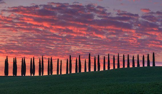 Sunrise at Agriturismo Poggio Covili, Tuscany, Italy