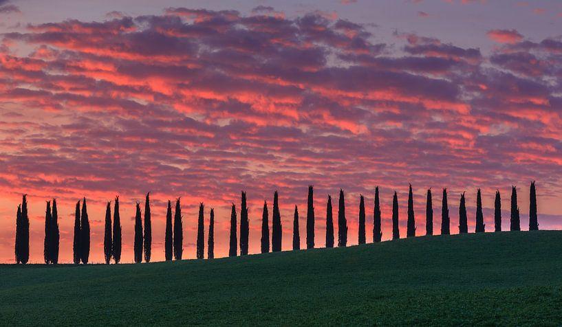 Sunrise at Agriturismo Poggio Covili, Tuscany, Italy von Henk Meijer Photography
