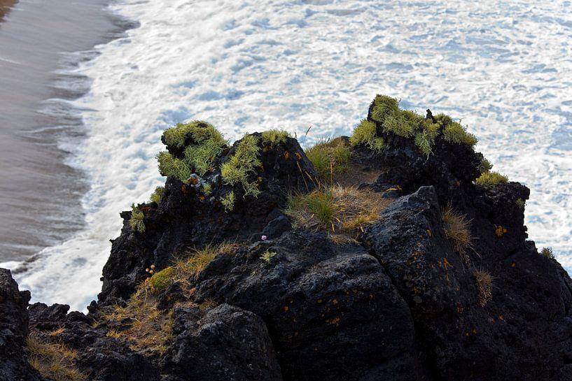 Kust IJsland van Anton de Zeeuw