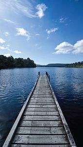 Steiger in Lake Mapourika - Nieuw Zeeland