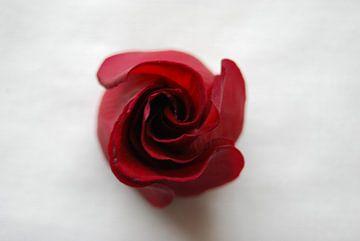 Red Rose von Spijks PhotoGraphics