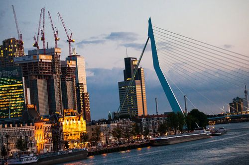 Building the Rotterdam van