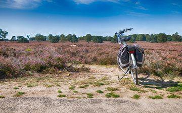 fiets op de ginkelse heide van Compuinfoto .