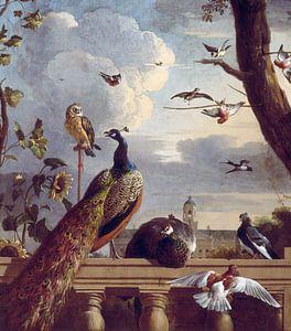 Vogels bij een balustrade, Melchior d'Hondecoeter