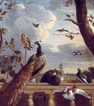 Vogels bij een balustrade, Melchior d'Hondecoeter van Meesterlijcke Meesters