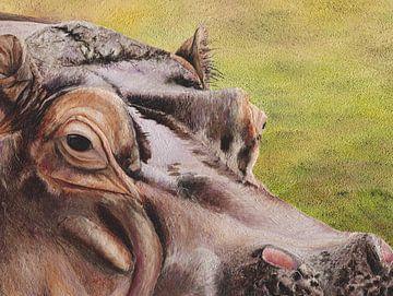 Nilpferd von Russell Hinckley