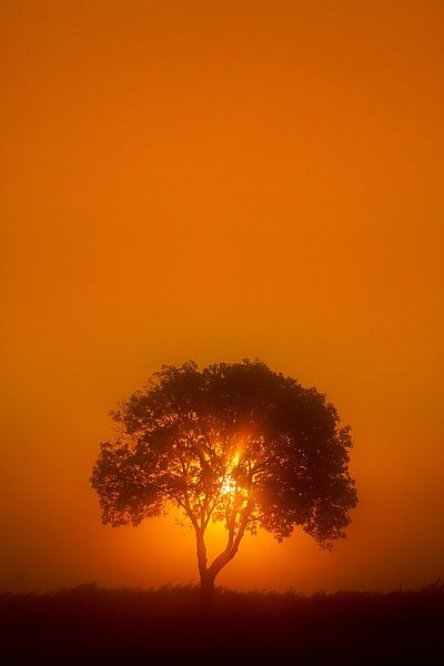 Sunrise van Peter Halma