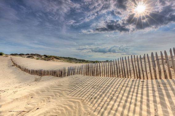 De zon breekt door in duinen van Den Haag