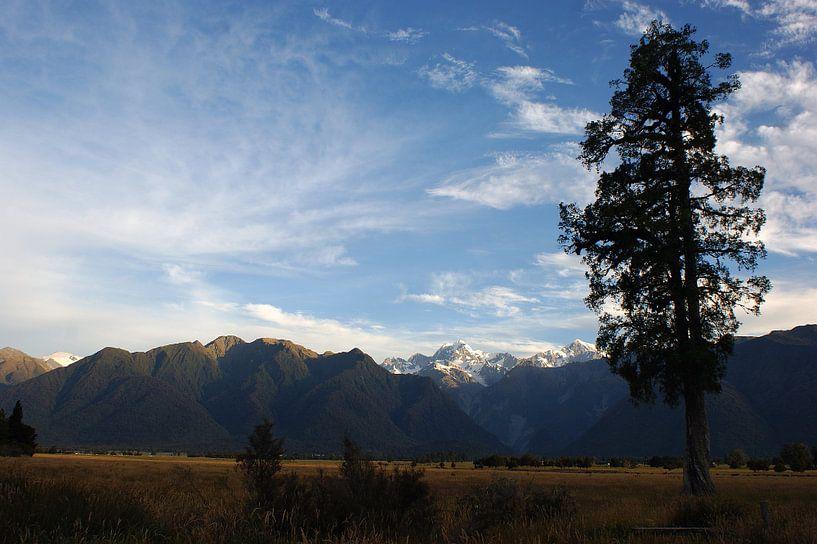 Southern Alps in de avondzon van Jeroen van Deel
