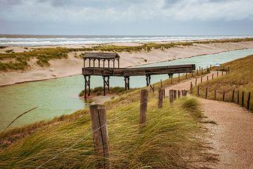Steg in den Dünen und der Nordsee (Niederlande) von Dorus Marchal