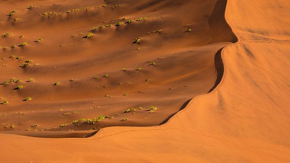Rode zandduin - Sossusvlei, Namibië