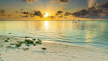 Sonnenuntergang am Strand von Oli N