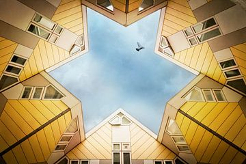 Maisons en cube Rotterdam sur Dirk Wüstenhagen