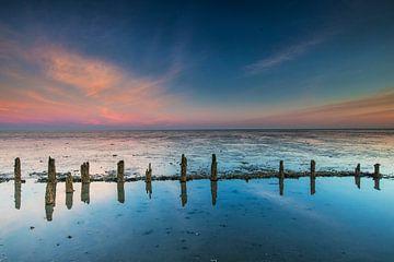 Waddenzee. van AGAMI Photo Agency