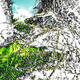 Gestoord Landschap #013 van Peter Baak