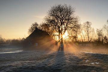 Zonnestralen op een mistige morgen von Rene Mensen
