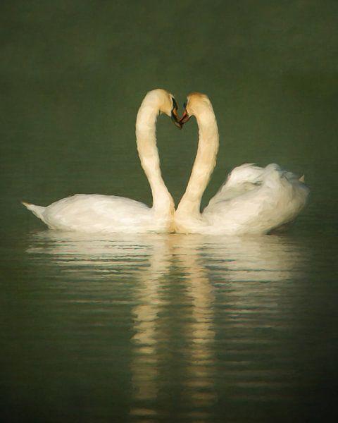 Heart of Swans van Lars van de Goor