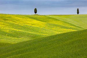 Toskanische Hügel von