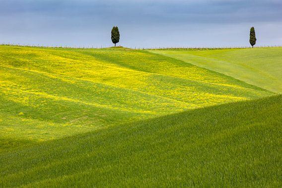 Toskanische Hügel von Andreas Müller