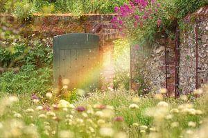 Der magische Garten von Anam Nàdar