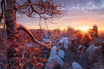 Winterzon bij de Bastei van Daniela Beyer
