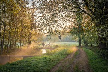 Morgenglut zwischen den Feldern von visitlimburg