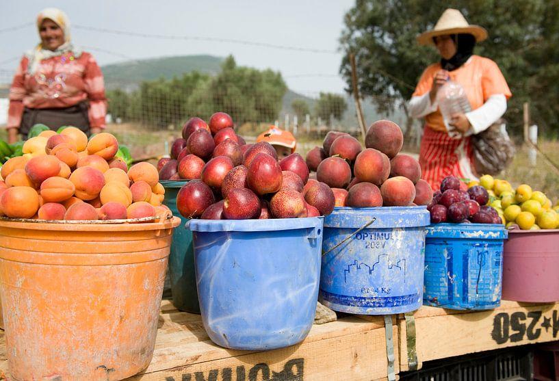 Maroc0752 van Liesbeth Govers voor omdewest.com