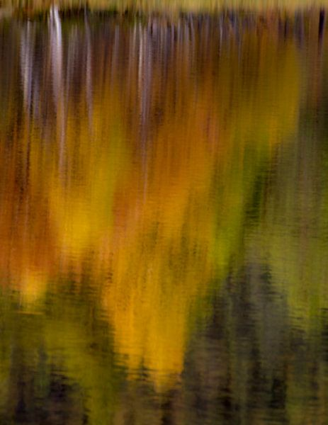 Reflectie van herfstkleuren in Noorwegen van Johan Zwarthoed