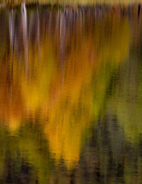 Reflectie van herfstkleuren in Noorwegen