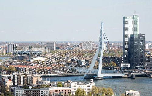 Die Erasmusbrücke in Rotterdam von MS Fotografie