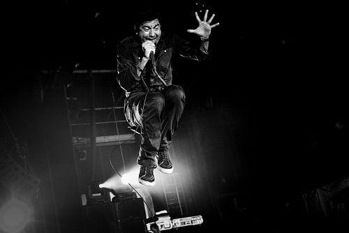 Deftones van Jonas Demeulemeester