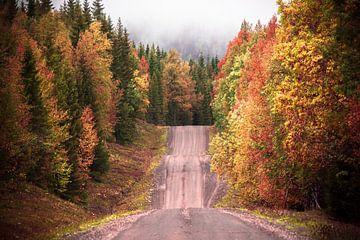 An der Herbststraße von Marc Hollenberg