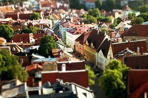 Kreative Filter in Tallinn von Milou VDB