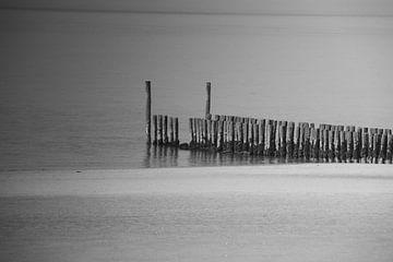 Zoutelande z/w van Kuifje-fotografie