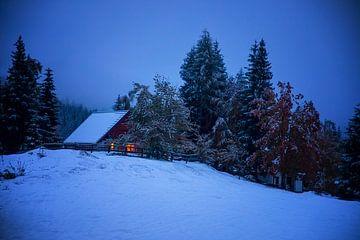 Gemütliches Dorfhaus auf einem Hügel in der Winternacht, Slowenien von Olha Rohulya
