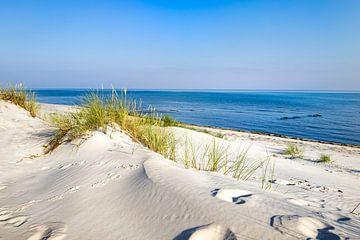 Duinen en strand aan de Oostzeekust van Sascha Kilmer
