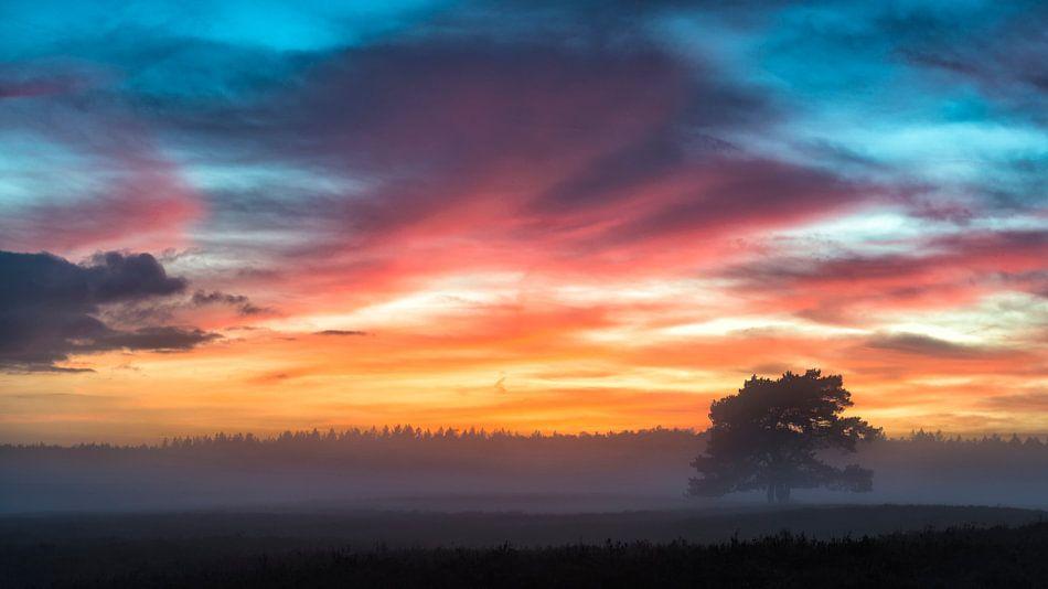 Winterse zonsondergang boven de heide op de Veluwe van Sjoerd van der Wal