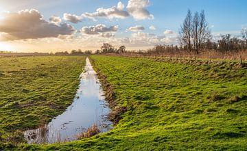 Holländische Polderlandschaft mit niedriger Sonne von Ruud Morijn