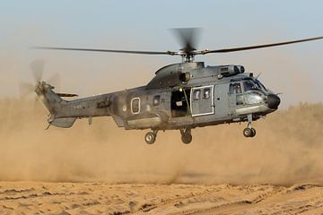 Koninklijke Luchtmacht AS532U2 Cougar van