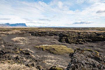 IJsland van Arjan Blok