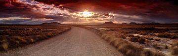 de weg door de woestijn Bardenas Reales sur robin waslander