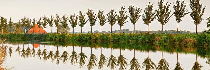 Baumreihe entlang des Ringkanals des Beemster-Polders von Frans Lemmens