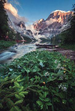 Pragser Wildsee mit Alpenglühen von Jean Claude Castor