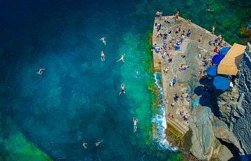 Zwemmen  van boven, Cinque Terre (Italië) van Nick Hartemink