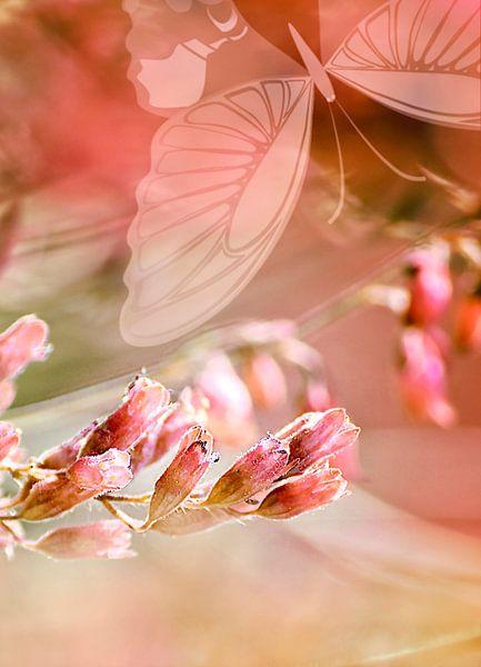 ROSE SPANGLES no5-Butterfly van Pia Schneider