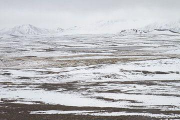 Wit IJsland van Tiny Hoving-Brands