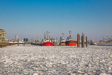 Hambourg - Remorqueurs à l'embarcadère en hiver sur Sabine Wagner